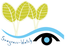 Seagrass Watch